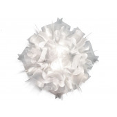 Veli Ceiling-Wall M, Ø 53 cm, Prisma